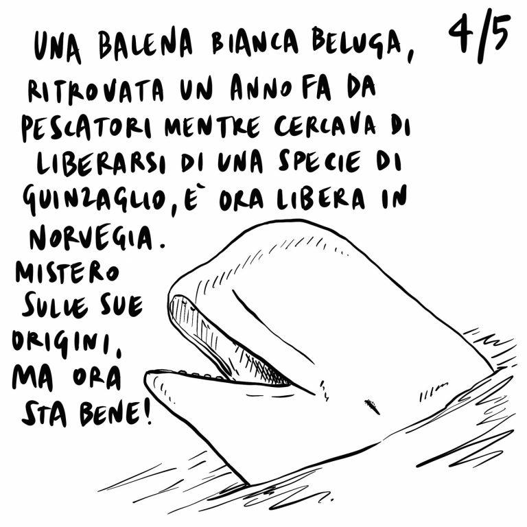 29.06.2020 A luglio il Governo varerà provvedimenti per la ripresa, raggiunti i 10 milioni di contagi nel mondo, Mattarella a Bergamo incita ad imparare dai propri errori.