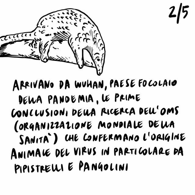 """10.2.2021 Grillo rinvia il voto sulla fiducia su Rousseau, l'OMS conferma l'origine animale del virus, una ricerca di """"Scienze"""" parla dell'inquinamento acustico causato dall'uomo negli oceani."""