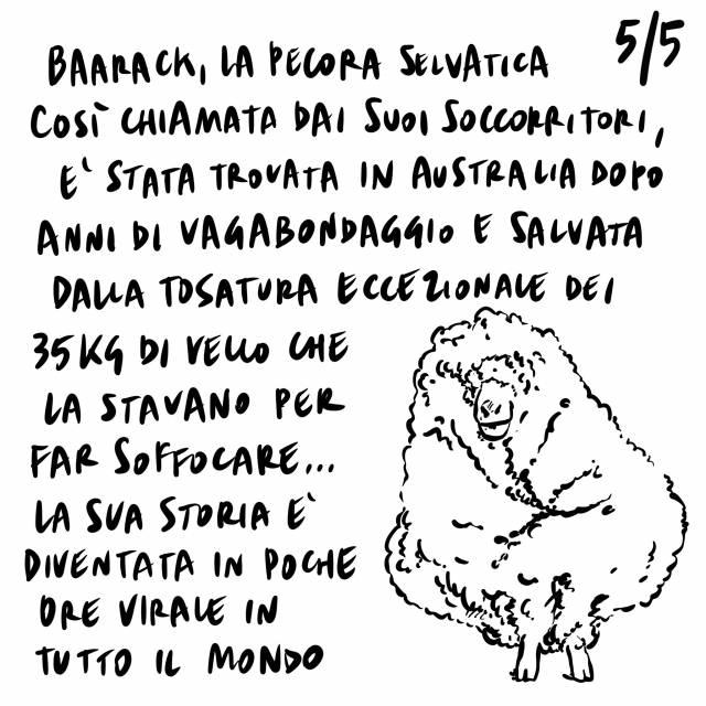26.2.2021 Patto per passaporto vaccinale, nuove zone arancioni a causa delle varianti, la storia della pecora Baarack.